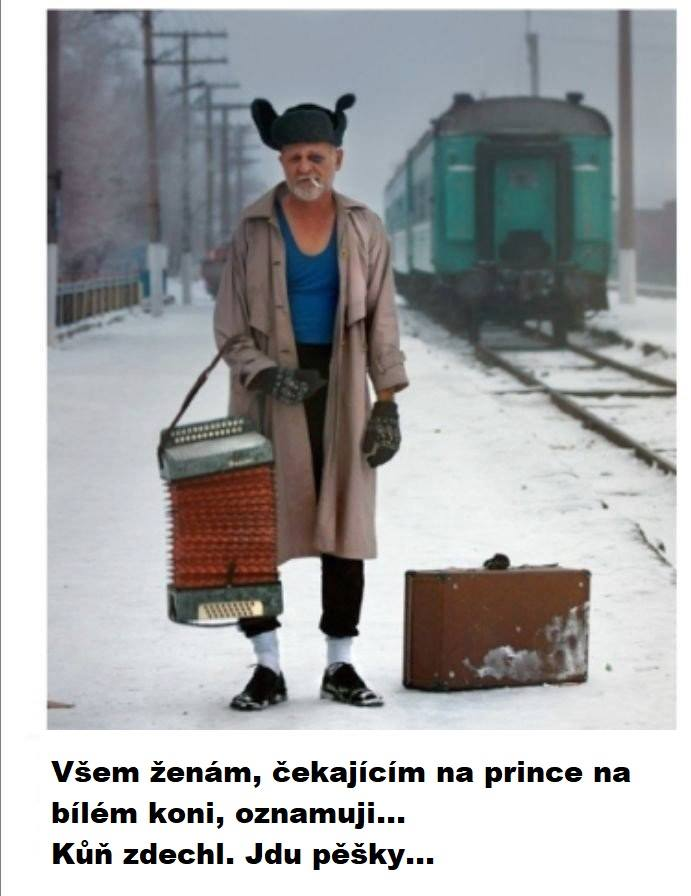 https://www.bambu.cz/public/foto/ZSFdvwbz5e4pZyA.jpg